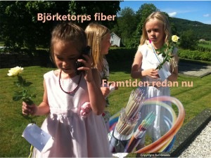 Bjorketorps-fiber-131030